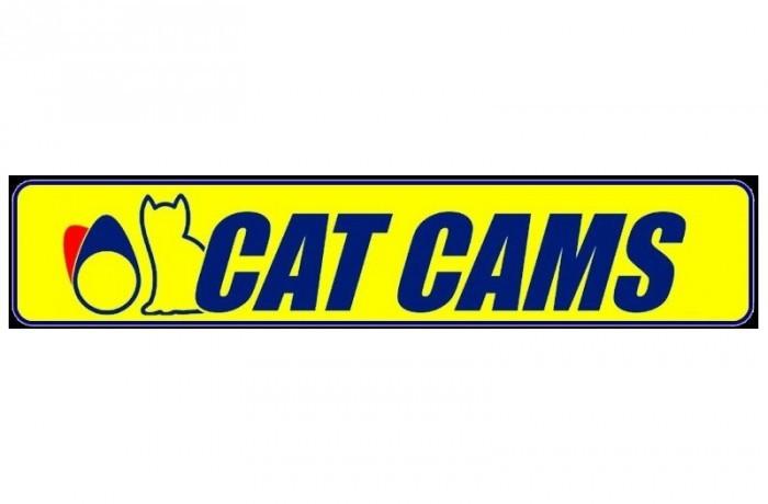 Cat-Cams
