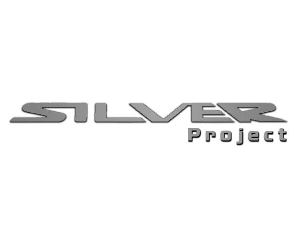 Silver Project